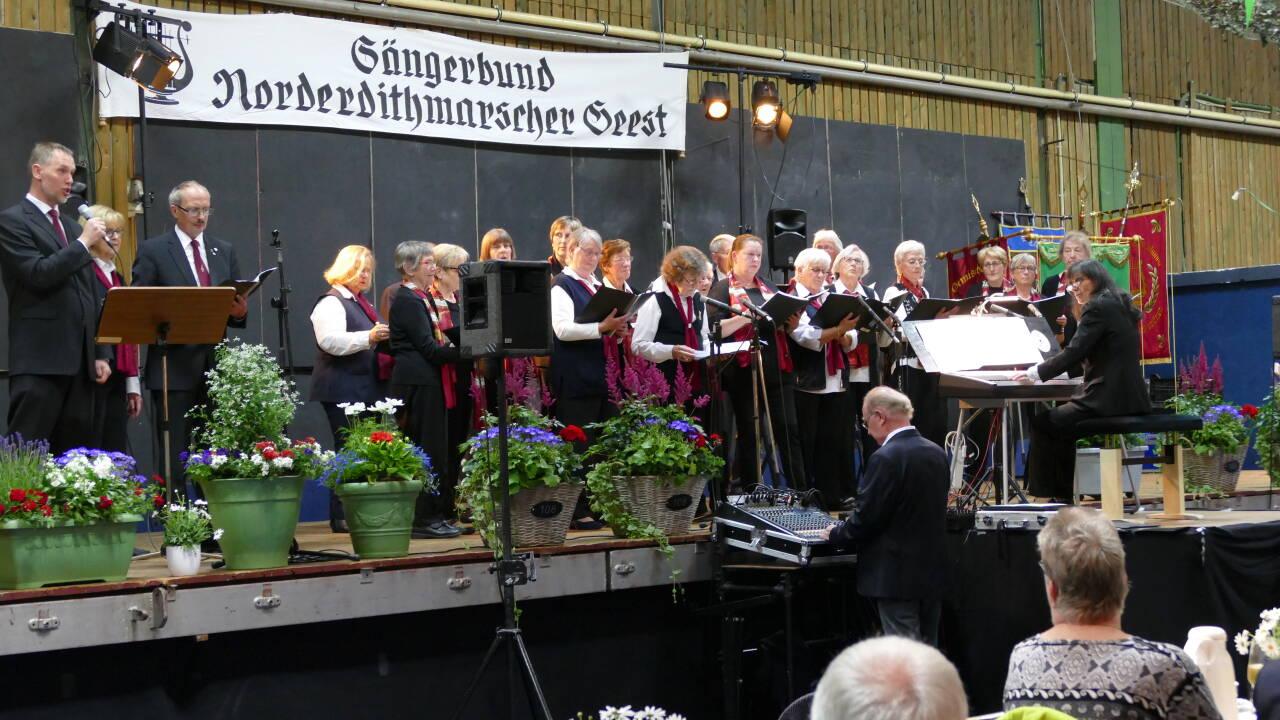 SK Weddingstedt, LT Hoffnung, Hemmingstedt und Wöhrden